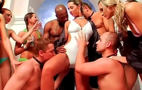 Nonsensical bitches get blasted and fitfully screwed by hung dudes